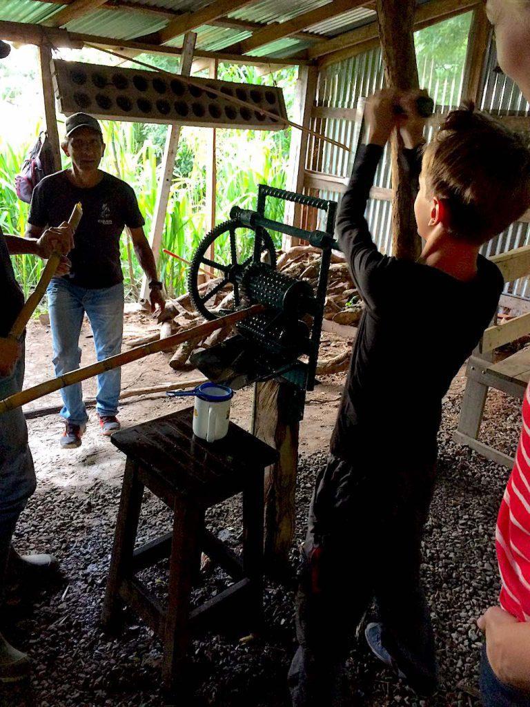 Frischen Zuckerrohrsaft auspressen - das macht man auch nicht alle Tage. Einer der Jungs an der traditionellen Zuckerrohrsaftpresse