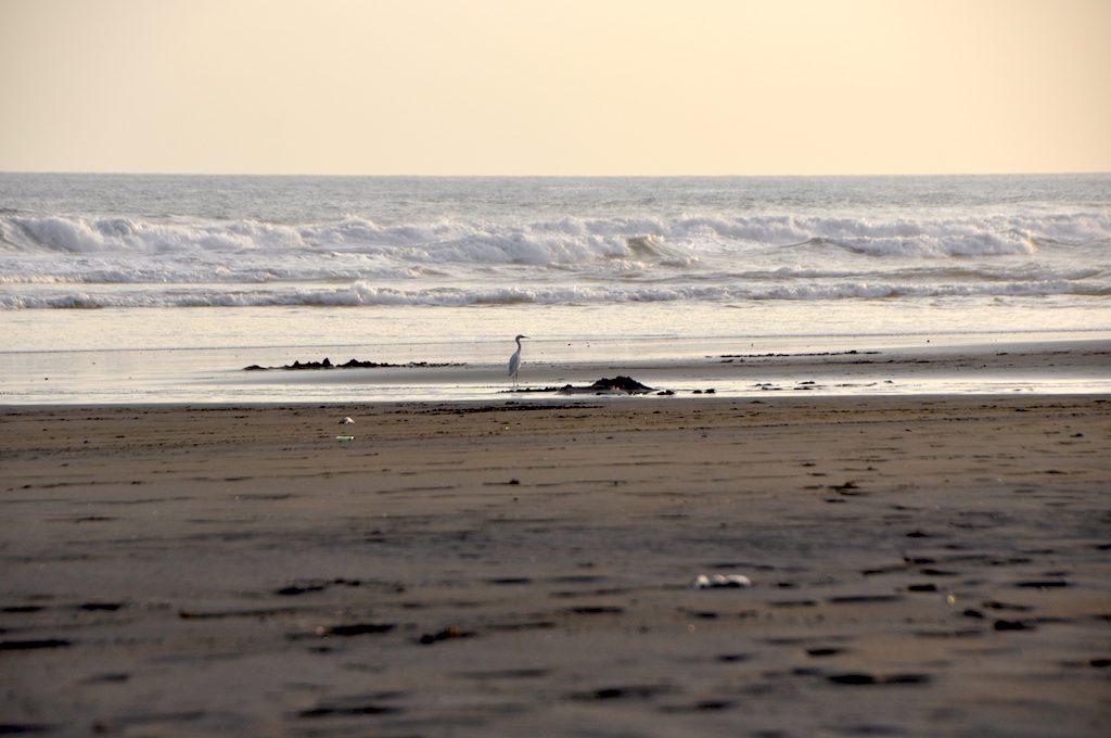 Menschenleerer Strand an der Costa del Bálsamo