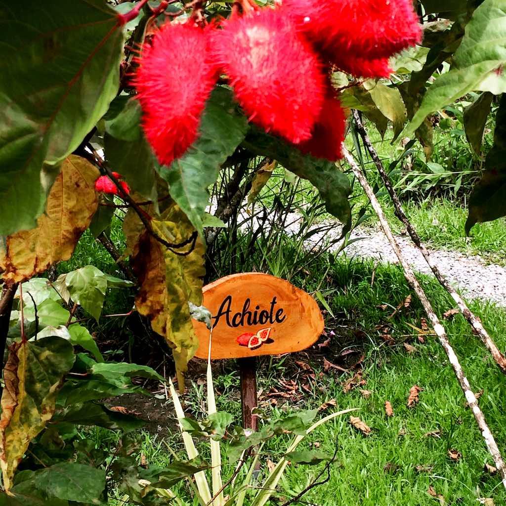 Auch der Garten im Casa Verde ist toll gepflegt.