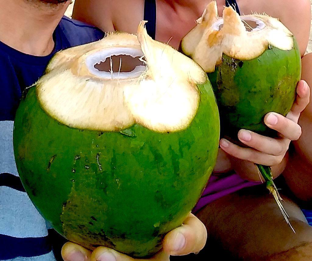 Leckere Kokosnüsse an der Playa Cocles.