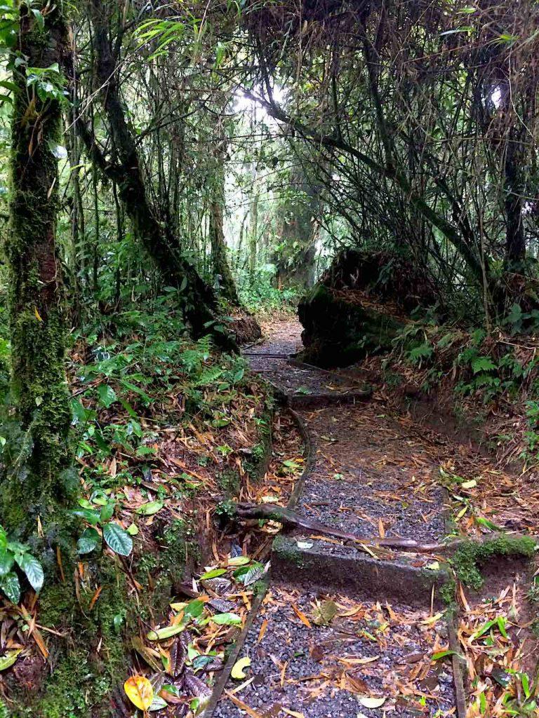 Auf dem Rundweg durch den Nationalpark Santa Elena