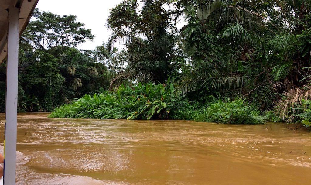 Auf kurvigen Wasserwegen nach Tortuguero.
