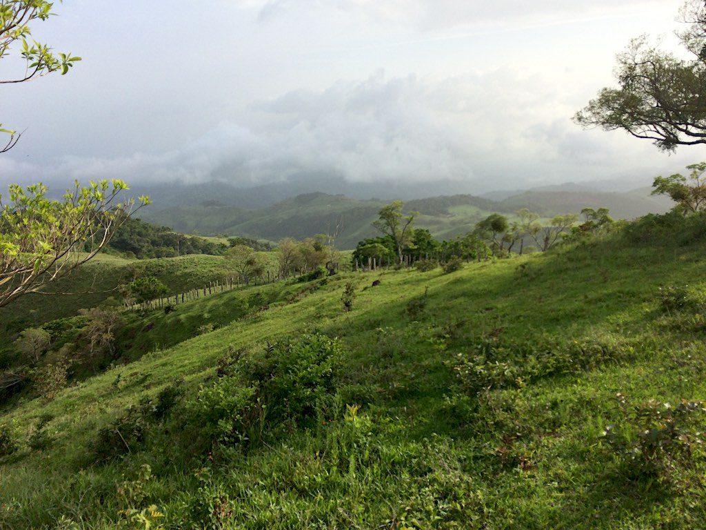 Immer wieder wunderschöne Ausblicke auf die Natur Monteverdes.