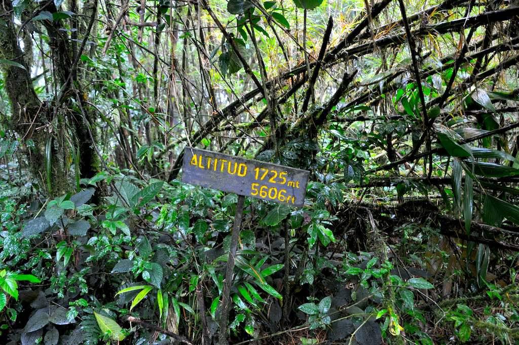 Im Nationalpark auf einer Höhe von 1725 m.